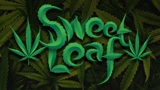 Download Sweet Leaf cool free fonts